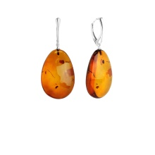 Dangle Amber Leverback Earrings
